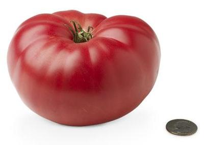 19-heirloom-tomato